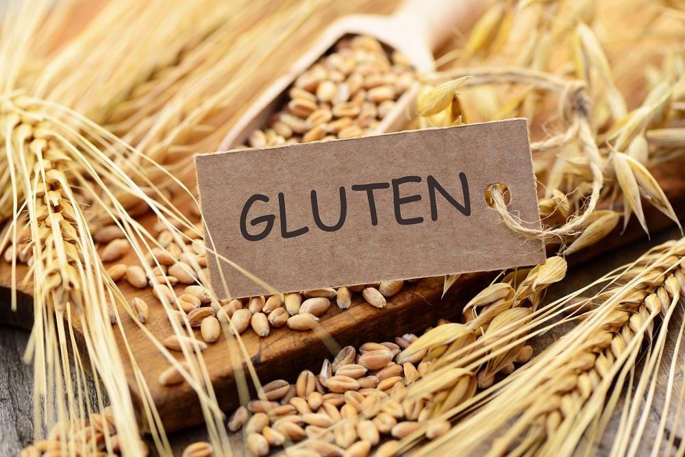 granos de trigo tienen gluten