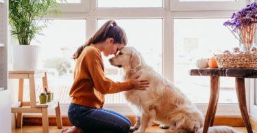 Vitalis Bienestar salud mascota beneficios saludables